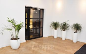 black doorframe plants and nice room