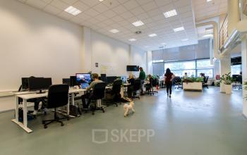 Modern flexdesks for rent including internet and lunch