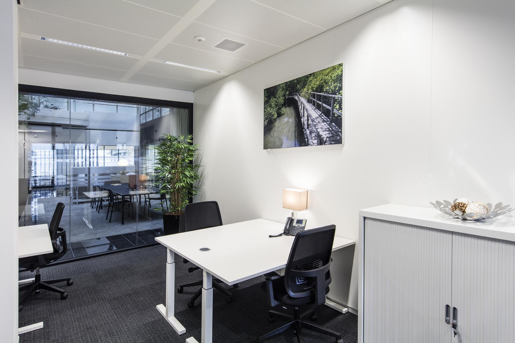 meubilair schilderij kast plant kantoor