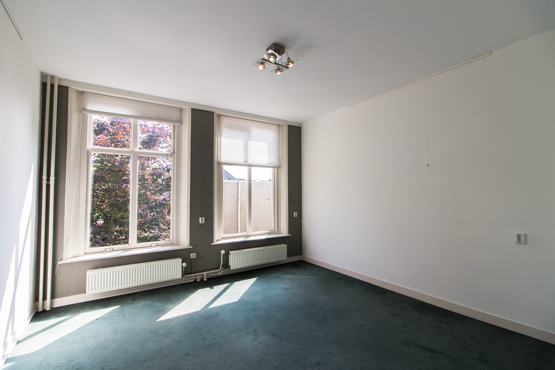 Spacious and light office buildings availabel