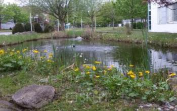 Idyllischer Business Park mit Büros zur Miete in Berlin-Marzahn