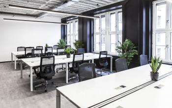 Coworking-Bereich mit mit vielen Arbeitsplätzen und Zimmerpflanzen