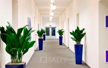 Langer Flur mit Büros zur Miete in Berlin