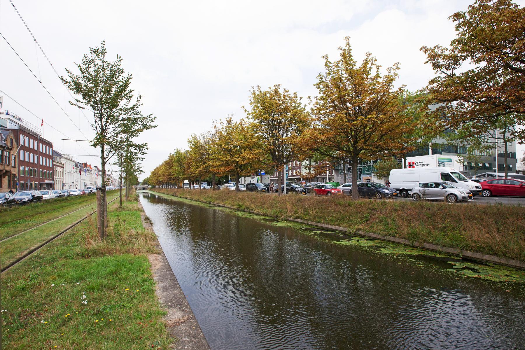 Koninginnegracht Den Haag omgeving kantoorpand