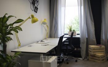 Arbeitsplatz mit ergonomischen Stühlen und Zimmerpflanze