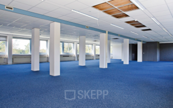 big freelance work space groningen blue