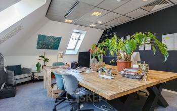 green plants office room haarlem green plants