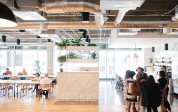 Großen freundlichen Büroraum mit vielen Arbeitsplätzen mieten am Gänsemarkt in Hamburg