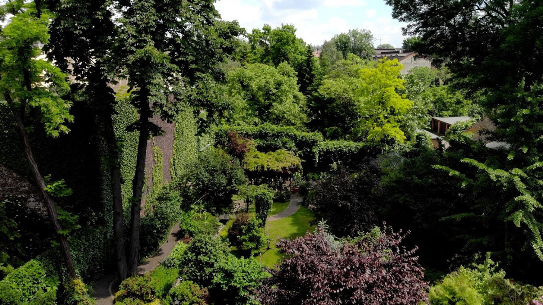 piękny ogród karmelicka 27 kraków