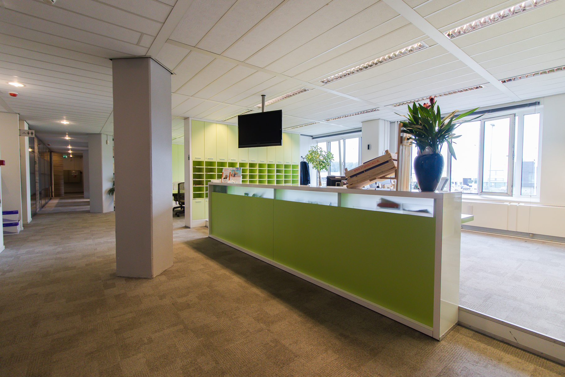 green reception desk in office building