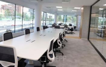 Alquilar oficinas Calle del Eucalipto 33 33, Madrid (4)