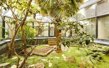 Espace de détente extérieur avec jardin à la rue de l'Amiral Hamelin