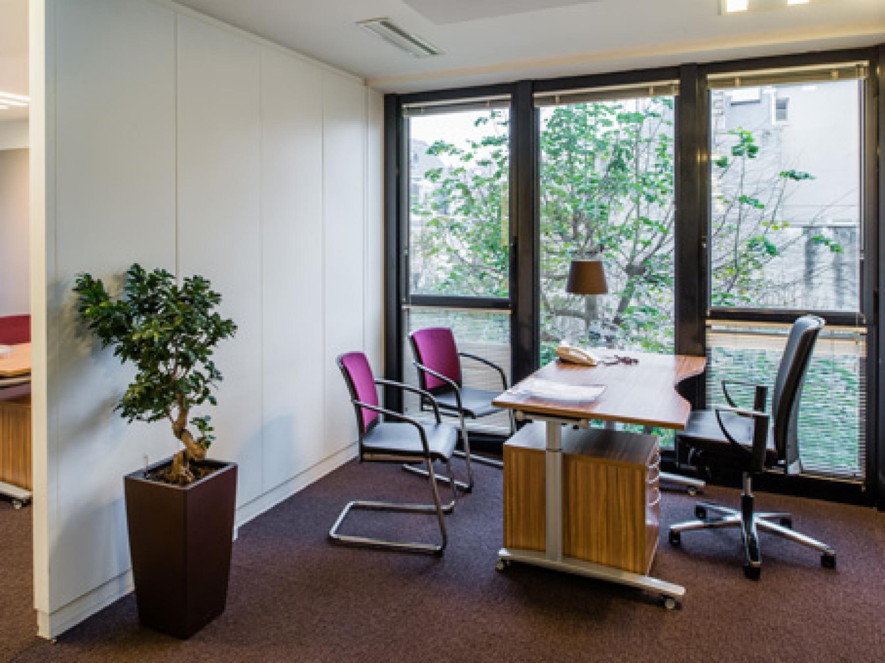 Bureau privé avec vue sur l'espace extérieur à la rue du Faubourg-Saint-Honoré