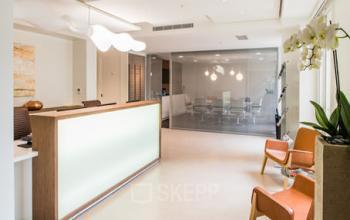 Réception avec salle d'attente où vous pourrez rencontrer vos invités à la rue du Faubourg-Saint-Honoré