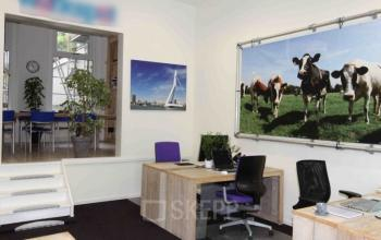flexible working space rotterdam van der takstraat cows painting