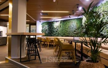plants lunchroom green environment table and chairs