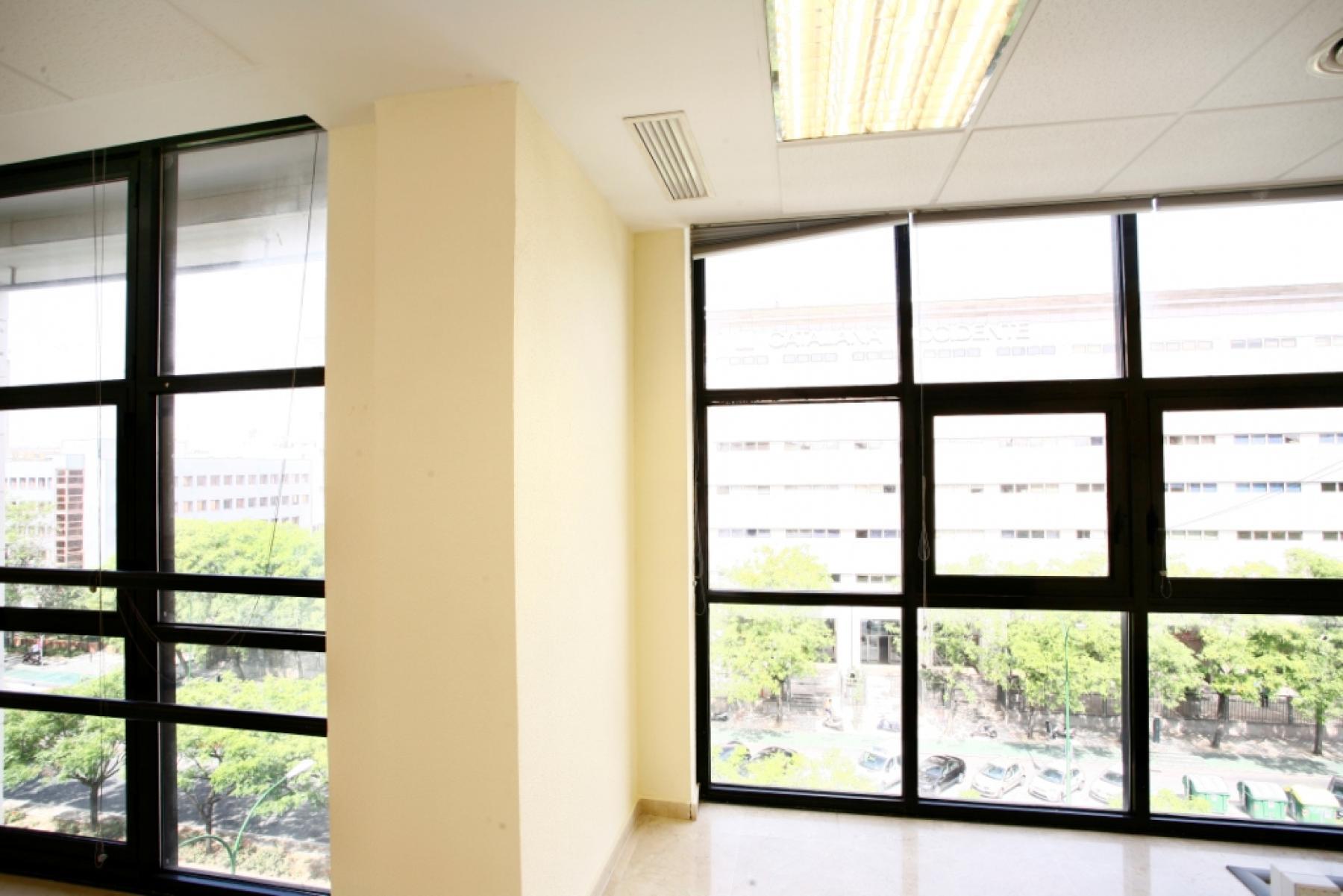 Alquilar oficinas Avenida San Francisco 15, Sevilla (4)