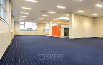 big office space tilburg blue carpets